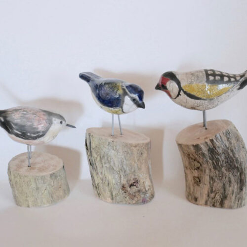 Tamaru Hunt-Joshi A trio of garden birds blue egg gallery wexford